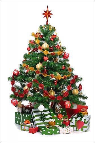 Klicken Sie auf die Grafik für eine größere Ansicht Name:Christbaum 2.jpg Hits:0 Größe:99,8 KB ID:2364